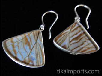 Pearl Blue Morpho (Morpho sulkowski) Fan Shimmerwing Earrings - reverse