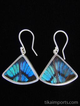 Blue Flash (Ancyluris Meliboeus) Fan Shimmerwing Earrings set in sterling silver