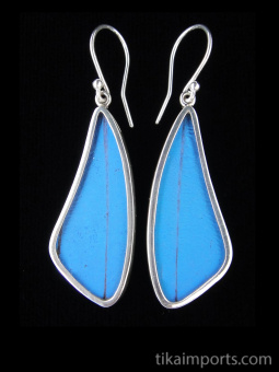 Blue Morpho (Morpho didius) Long Wing Shimmerwing Earrings set in sterling silver