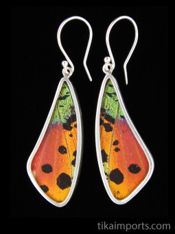 Rainbow Sunset (Urania rhipheus) Long Wing Shimmerwing Earrings set in sterling silver