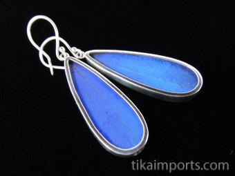 Blue Morpho (Morpho didius) Long Drop Shimmerwing Earrings set in sterling silver