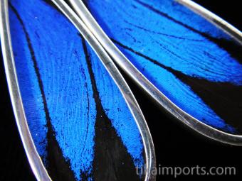 Blue & Black (Papilio ulysses) Long Drop Shimmerwing Earrings set in sterling silver - closeup