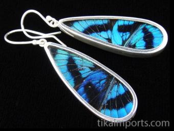 Blue Flash (Ancyluris Meliboeus) Long Drop Shimmerwing Earrings set in sterling silver