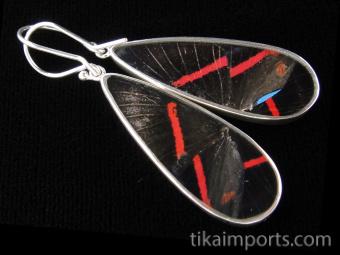 Blue Flash (Ancyluris Meliboeus) Long Drop Shimmerwing Earrings set in sterling silver - reverse