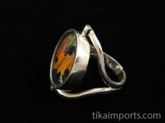 Reversible Blue & Black/Sunset Round Shimmerwing Ring with adjustable band