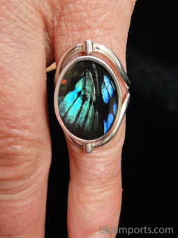 Reversible Blue Flash/Sunset Oval Shimmerwing Ring with adjustable band
