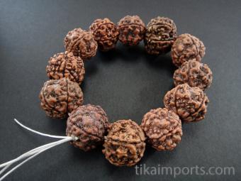Large, natural rudraksha seeds strung on stretch elastic