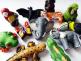 Critter Beads Jungle Assortment