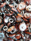 100 pieces of Chestnut Victorian shell boot-buttons, made in Muscatine, Iowa