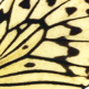 closeup, the front of a forewing of an Idea leuconoe or Paperkite Butterfly.