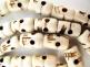 Prayer bead mala strand of 108 carved bone skull beads