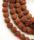 Prayer bead mala strand of 108 rudraksha seed beads