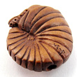 handcarved boxwood ojime bead of ammonite showing hole lengthwise through shell