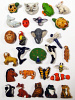 Critter Beads Best Seller Assortment
