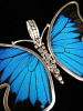 Large Blue & Black (Papilio ulysses) Shimmerwing Pendant set in sterling silver butterfly design - closeup