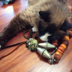 office kitty Bodhi taking a nap on some antique amber beads