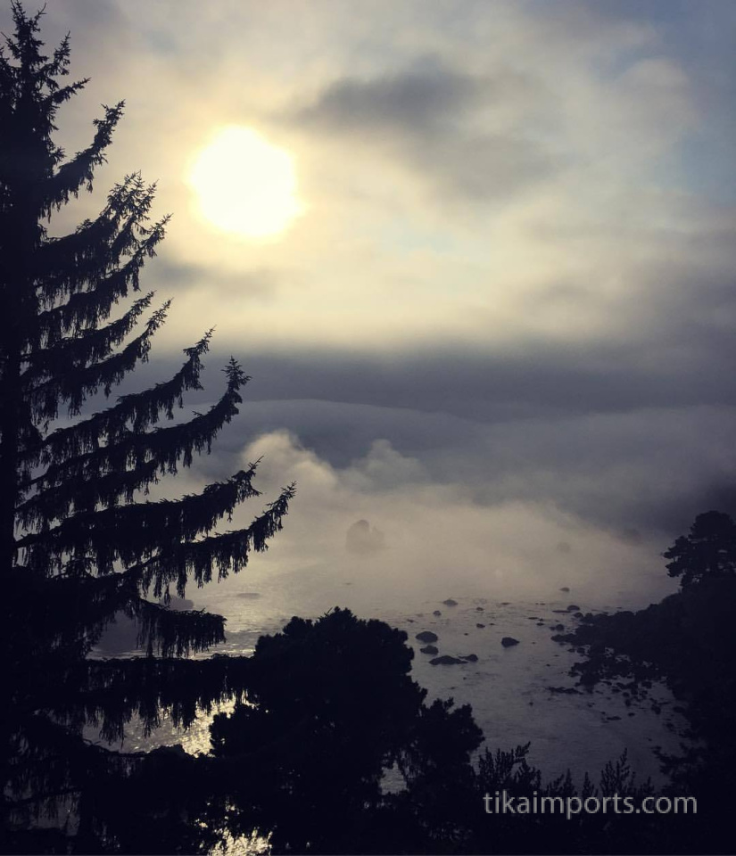 evening fog over the Pacific Ocean, as seen from the Tika office