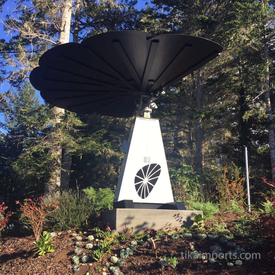 Tika's Solar Flower- opening up to the sun