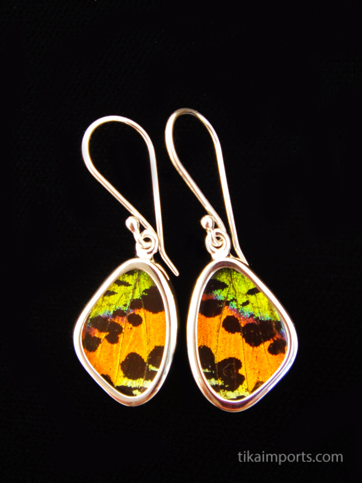 cbe76c2a821185 Tiny Rainbow Sunset (Urania rhipheus) Shimmerwing earrings with butterfly  set in sterling silver